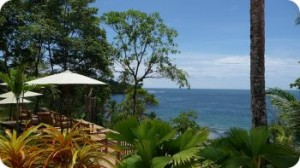 Бокас дель Торо